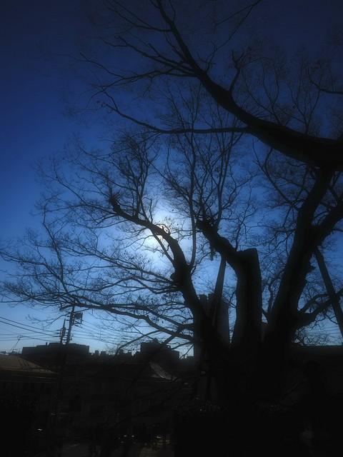 M1019315_2048x1536_補正済.jpg
