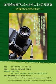 akatsuka-dm01_800x540.jpg