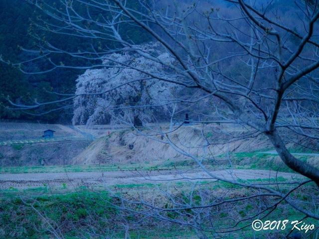 E4171580_CameraRAW_2048_signed.jpg