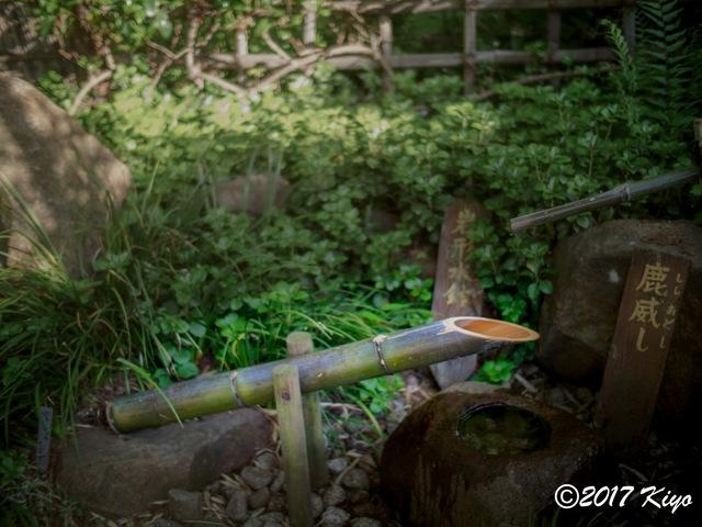 E5051015_CameraRAW_2048_signed.jpg