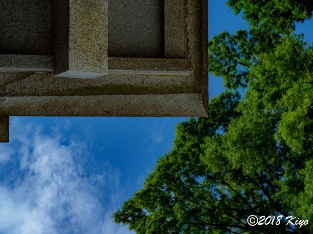 E6093271_CameraRAW_2048_signed.jpg