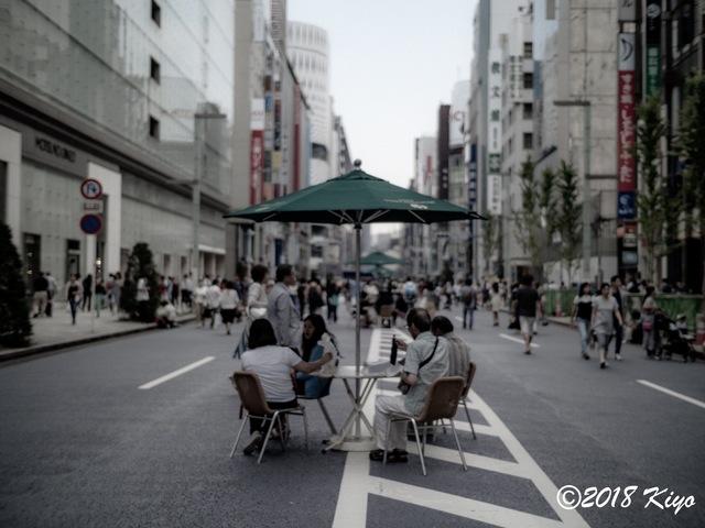 E6093451_CameraRAW_2048_signed.jpg