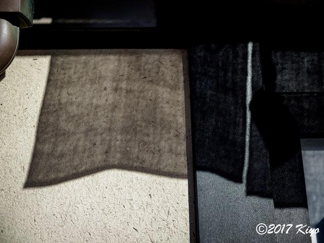 E9282920_CameraRAW_2048_signed.jpg