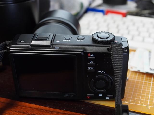M4060374.jpg
